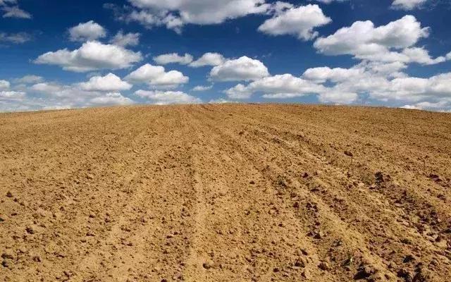 农村土地变现的三种方式,咱农民需要了解!