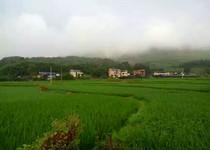 双溪村武楼