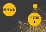"""""""互联网+农村""""开启创业新模式,五大方向造就亿万财富!"""