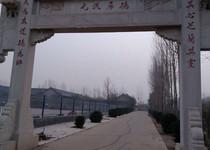 东张邢村风貌